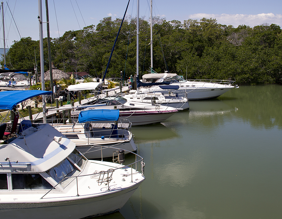 Marina at Gilbert's Resort, Key Largo